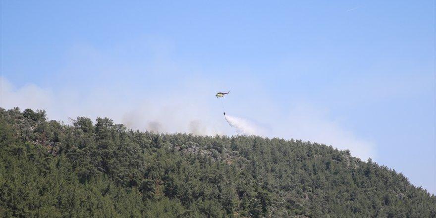 Milas'ta ormanlık alandaki yangına müdahale ediliyor