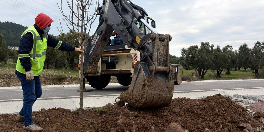 Aliağa'daki Bozköy'de 75 adet süs armudu toprakla buluştu