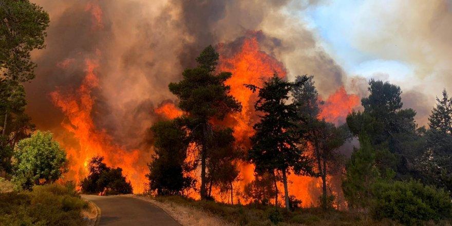 Kudüs'te çıkan yangında 2 bin 650 dönüm arazi kül oldu
