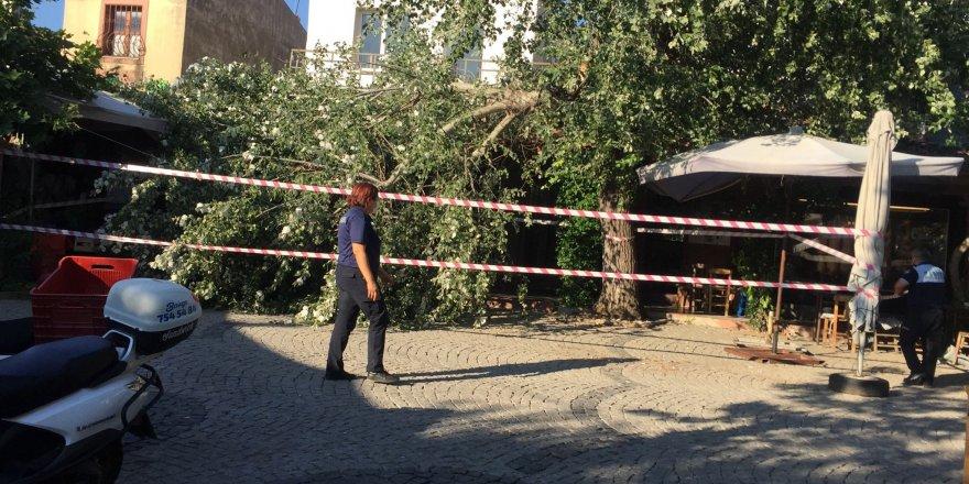 İkiye bölünen ağaç masaların üzerine devrildi, faciadan dönüldü