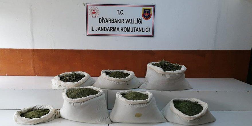 Diyarbakır'da dev uyuşturucu operasyonu: 1 milyon 258 bin kök kenevir ve 1 ton 734 kilo uyuşturucu ele geçirildi
