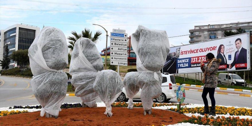 Kuşadası'nda belediye ağaçları elyaf ile soğuktan koruyor