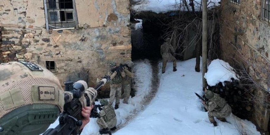 Bitlis'te terör operasyonu: 11 gözaltı
