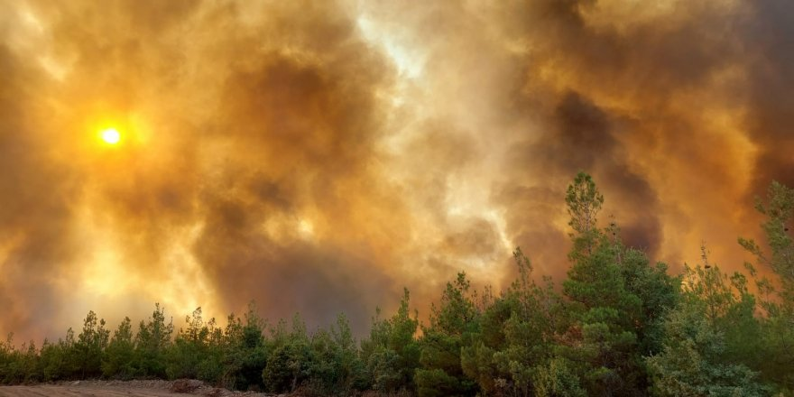 Yangınlarda altıncı gün   Pakdemirli: Antalya, Muğla, Isparta ve Denizli'deki 9 yangınla mücadelemiz devam ediyor