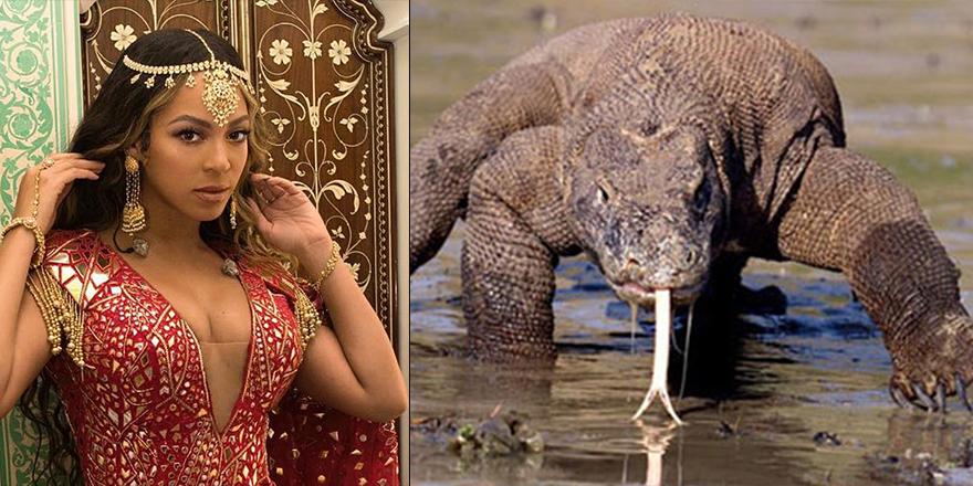 Dünyanın en zengin ailelerinden Ambanilerden komodo ejderli 'süper lüks' hayvanat bahçesi