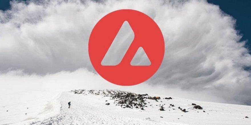 Bitcoin'de yatay seyir, AVAX'ta yeni tarihi zirve