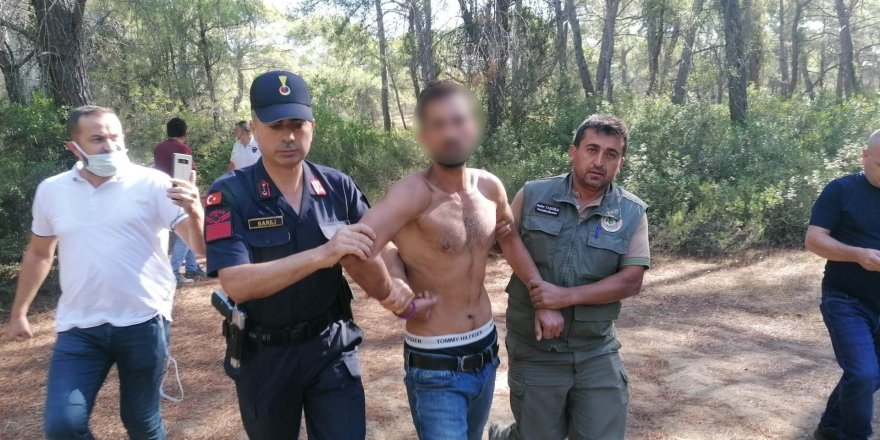 Manavgat'ta ormanı yakmaya çalışan bir kişi suçüstü yakalandı