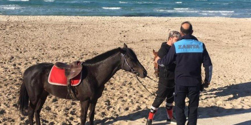 Sakatlanan yarış atına Çeşme'de plaj engeli