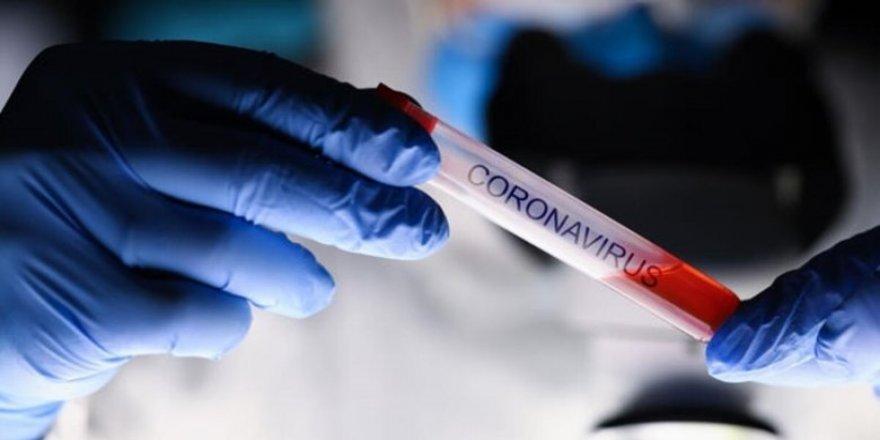 Afyonkarahisar'da 2 kişide mutasyonlu Covid-19 tespit edildi